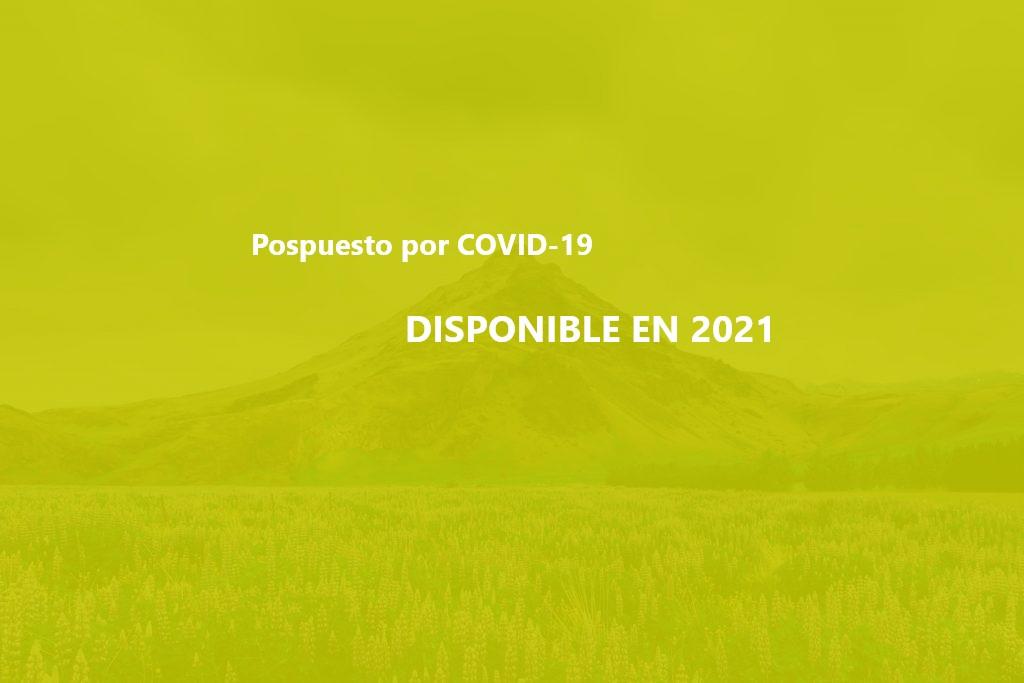 fondo parallax-1024x683 letero COVID-19